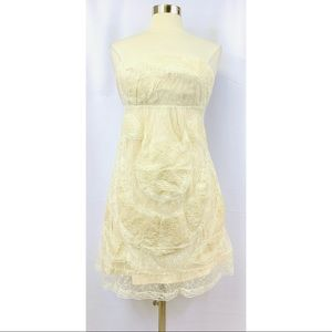 NWT Lucy & Co. Lace Cream Color Strapless Dress L
